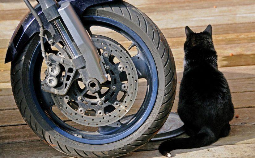 E-Motorrad Stammtisch